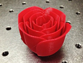 Photo of a rose created by a 3D printer